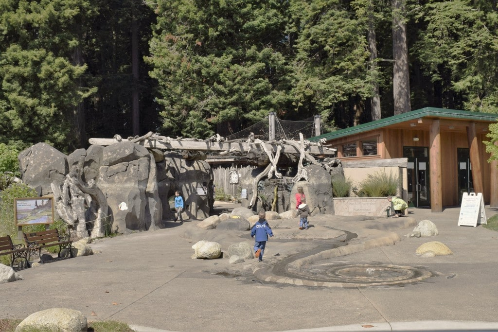 watershed heroes exhibit at sequoia park zoo