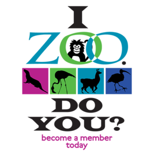 i zoo do you? logo