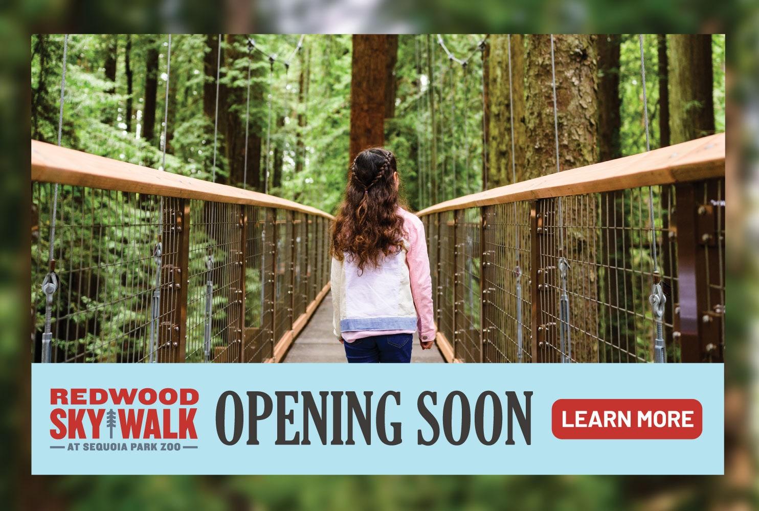 redwood skywalk opening soon
